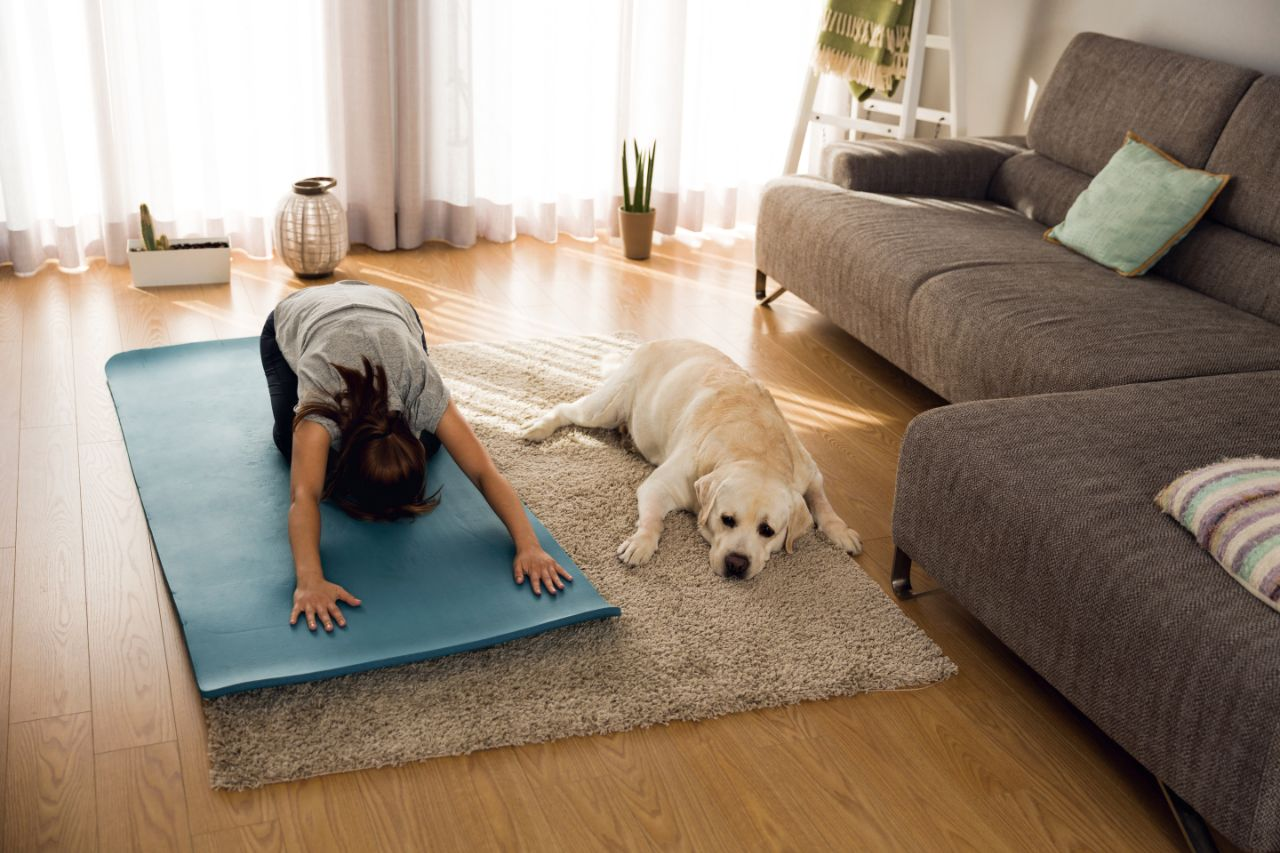 Woman Doing Exercise With Dog