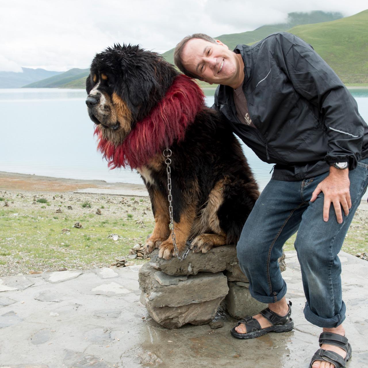 Man posing with decorated Tibetan mastiff dog