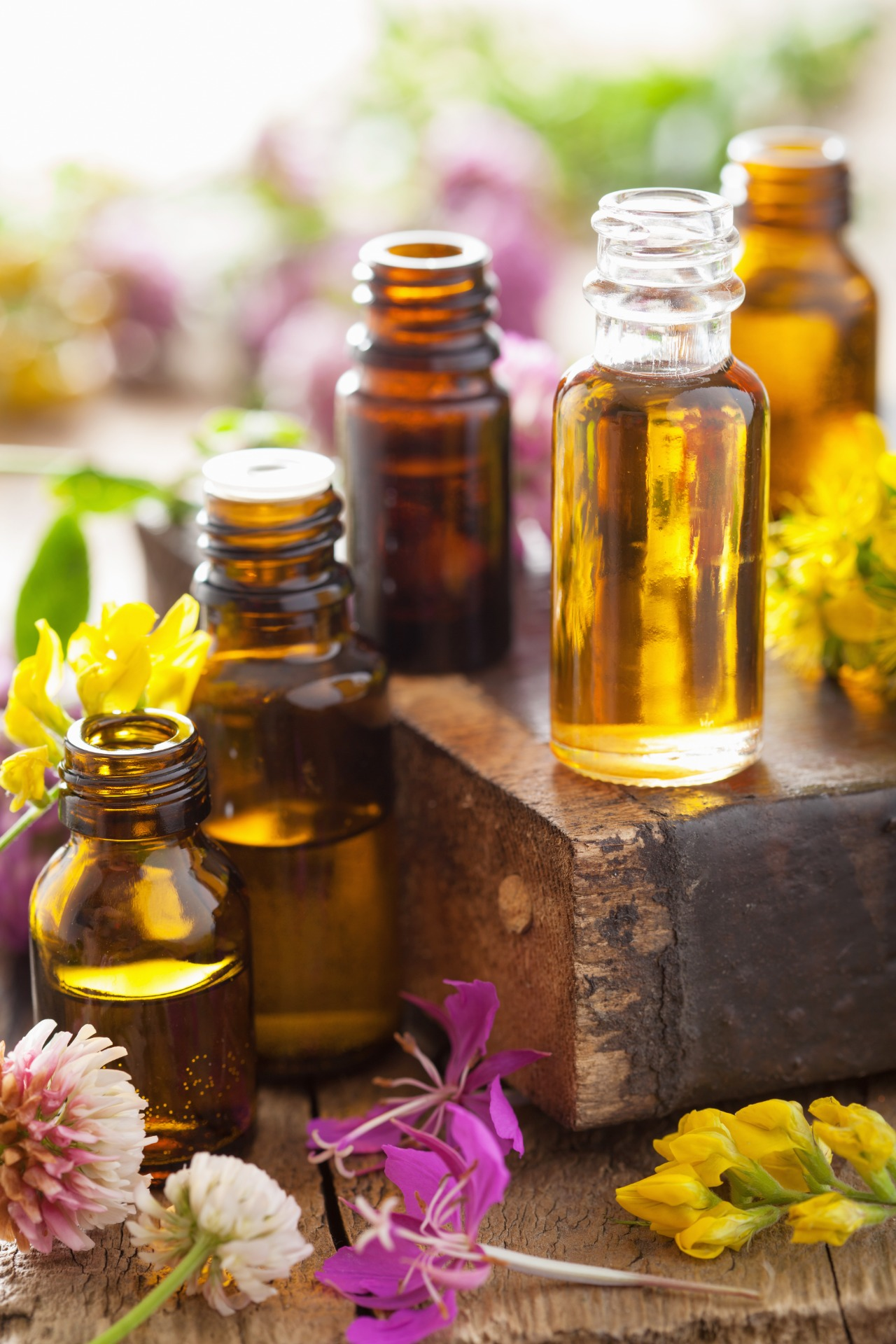essential oils and medical flowers herbs in bottles