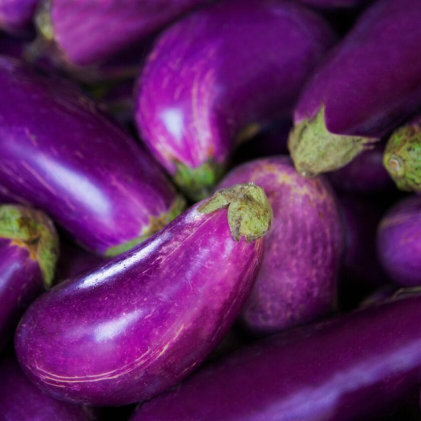 multiple eggplants close-up